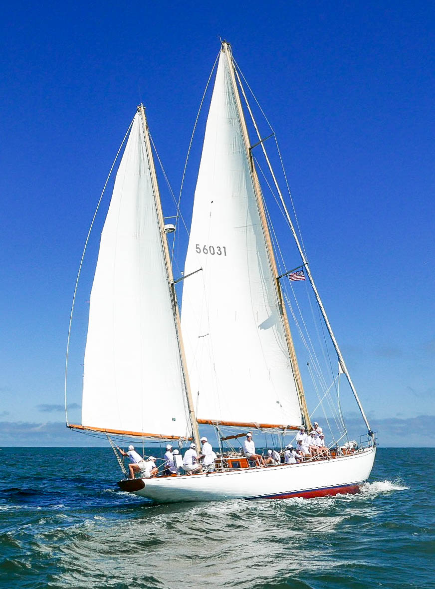 Sail is white, sky is blue